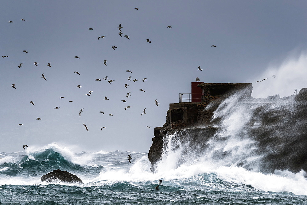 Waves Crashing Against The Rugged Rock Coastline As Birds Fly Overhead Against A Blue Sky, La Isla, Tarifa, Costa De La Luz, Cadiz, Andalusia, Spain