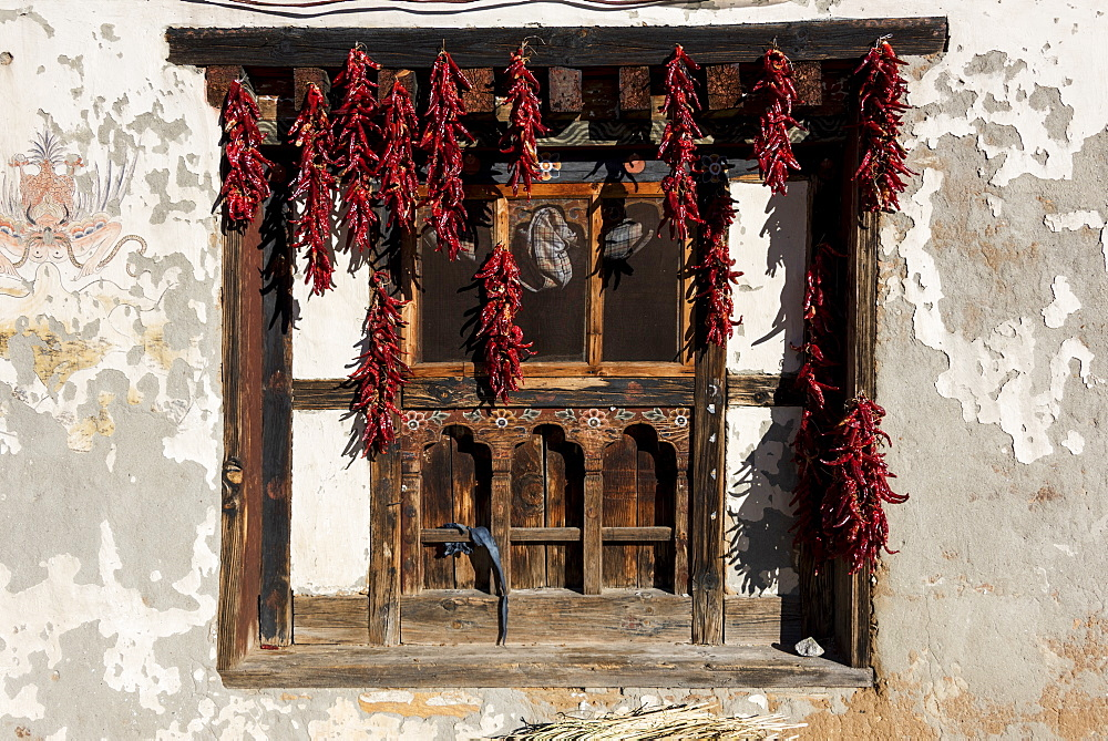 Dried Red Peppers Hanging In A Window, Paro, Bhutan