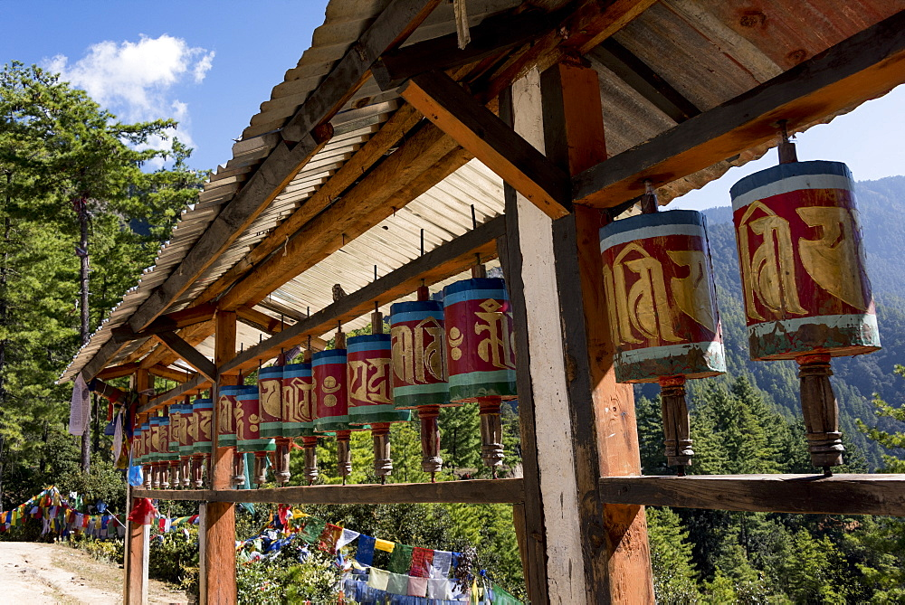 Prayer Wheels And Prayer Flags Along Taktsang Trail, Paro, Bhutan