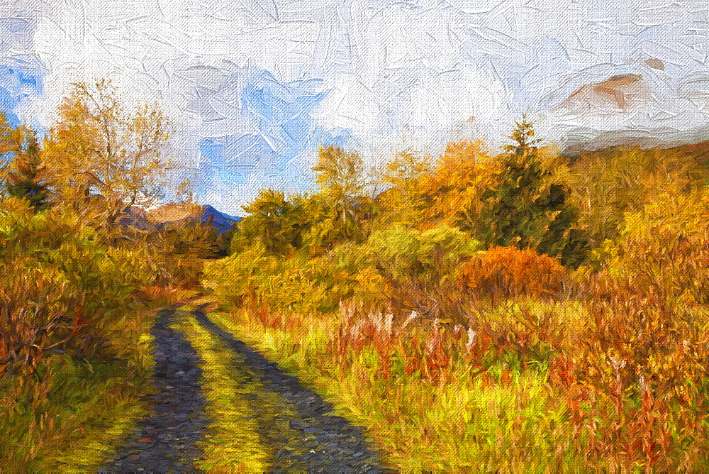 Autumn Scenic Oil Painting Along Chiniak Highway, Kodiak, Alaska, United States Of America