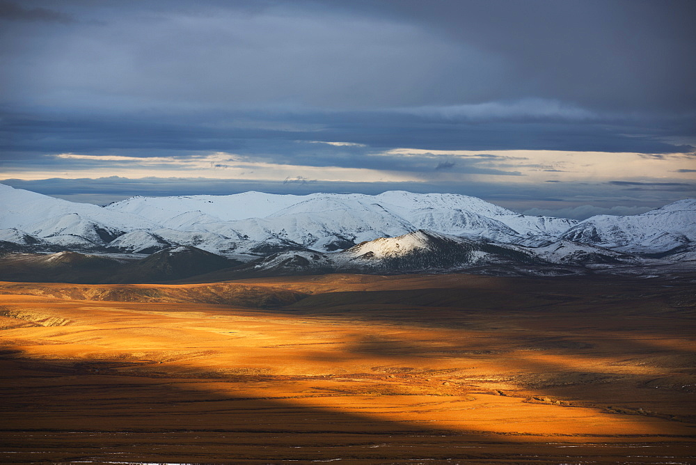 The Late Day Sunshine Illuminates The Autumn Coloured Tundra Along The Dempster Highway, Northwest Territories, Canada