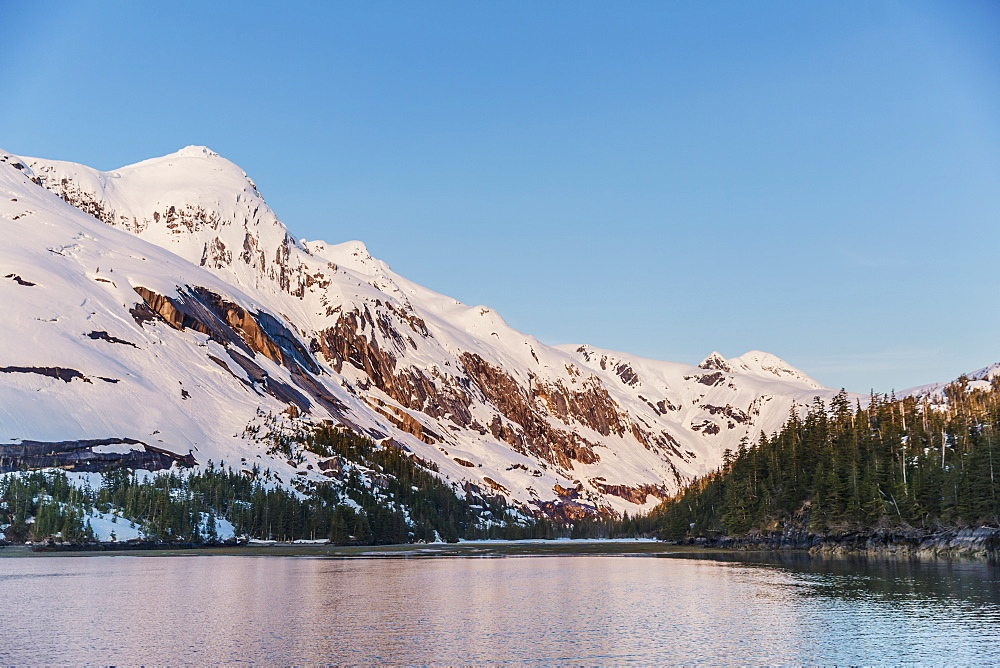 Snow Covered Peaks Rise Above The Calm Waters Of Kings Bay, Prince William Sound, Evergreen Trees In The Foreground, Whittier, Alaska, United States Of America