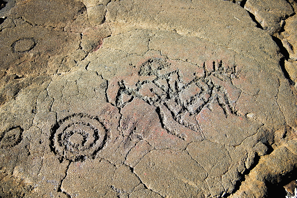 Petroglyphs On The King's Trail, Waikaloa, Island Of Hawaii, Hawaii, United States Of America