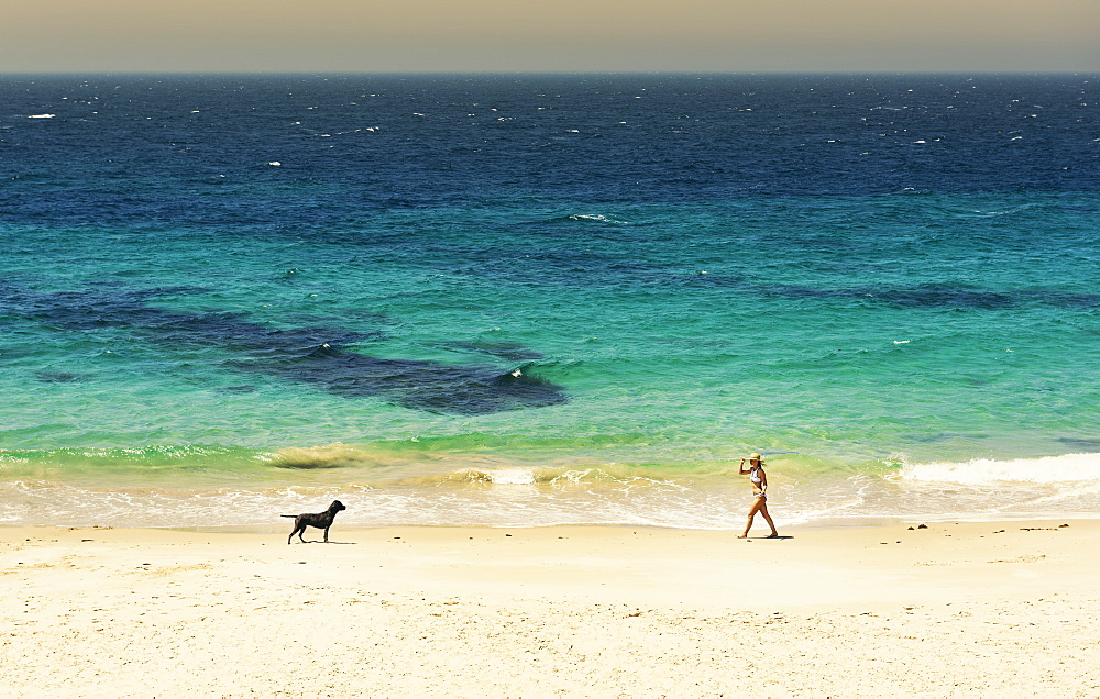 A Young Woman Walks On The Beach Of The Mediterranean Sea With Her Dog, Tarifa, Cadiz, Andalusia, Spain