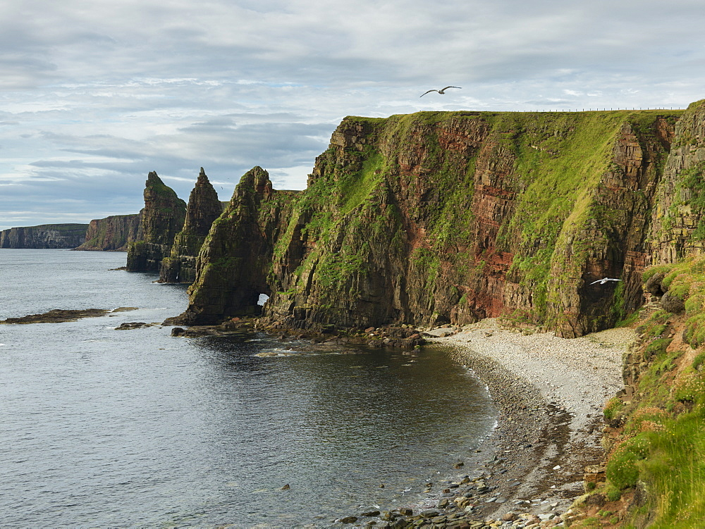 Sea Stacks And Cliffs Along Duncansby Head, John O'groats, Scotland