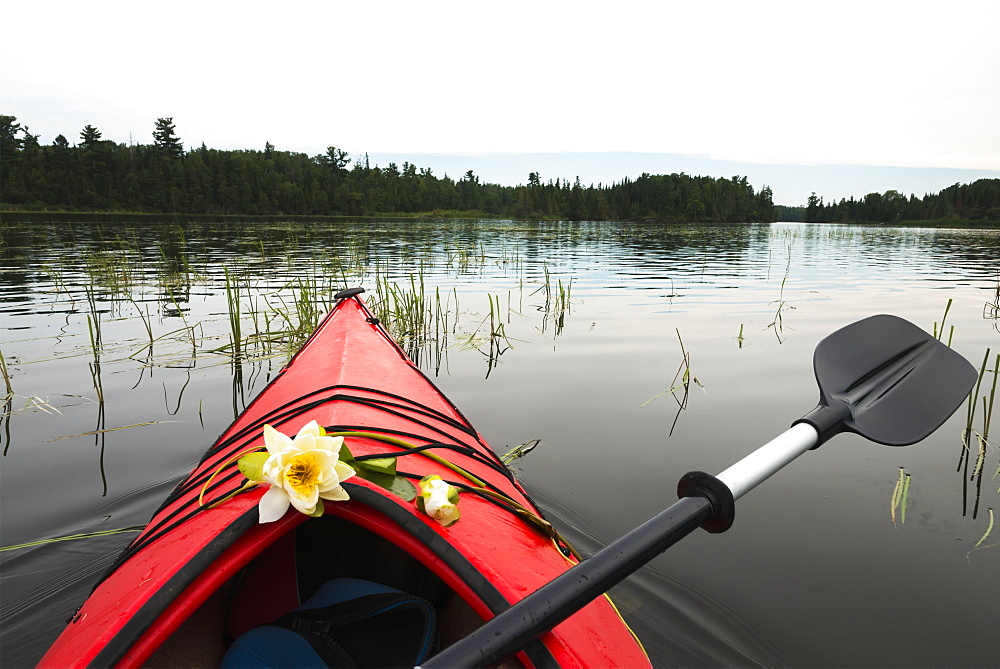 A Red Kayak And Paddle With Fresh Flowers Placed On The Bow While Floating In A Lake, Ontario, Canada