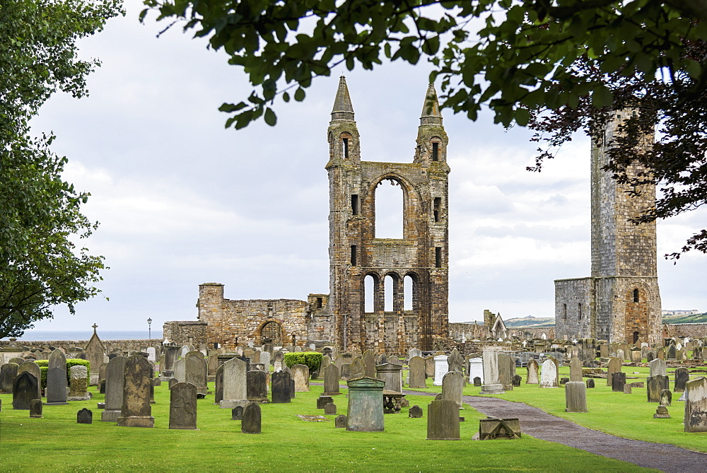 St. Andrews Cathedral Ruins And Cemetery, St. Andrews, Fife, Scotland