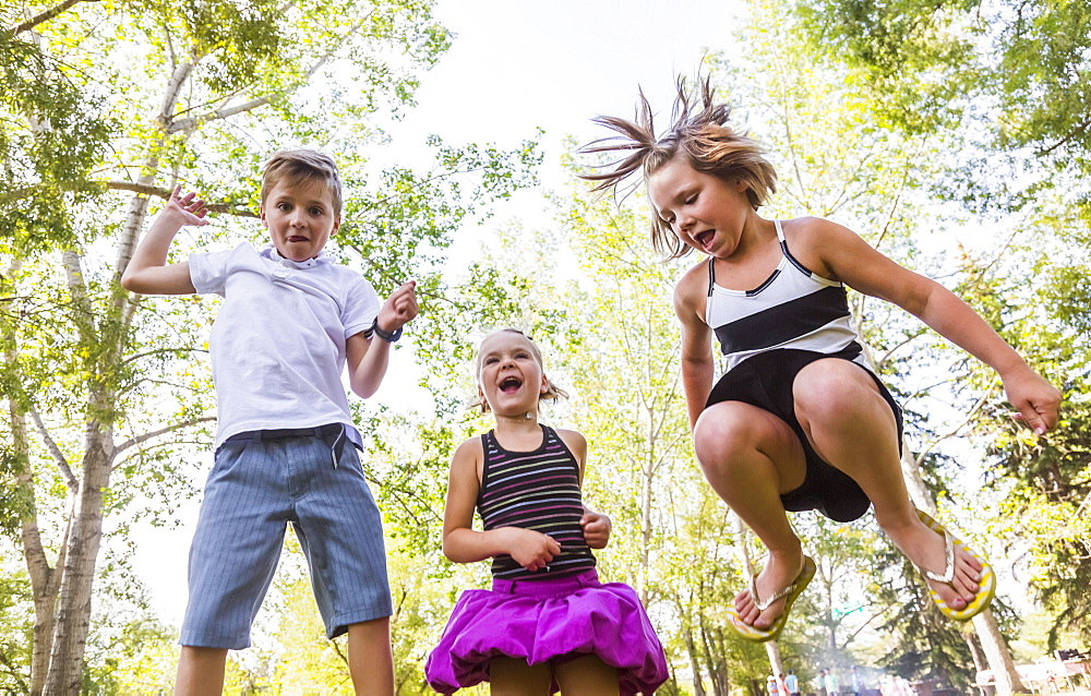 Three Siblings Jumping In The Air In A Park During A Family Outing, Edmonton, Alberta, Canada