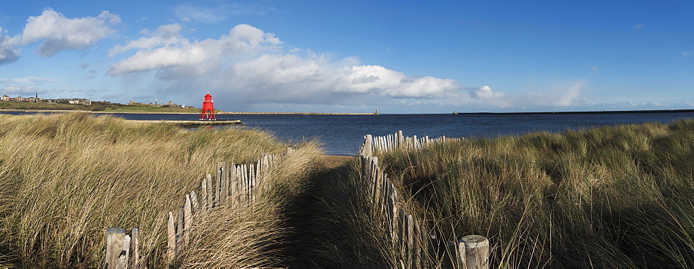 Path Lined With Wooden Posts And Tall Grass At The Coast, Herd Groyne Lighthouse In The Distance, South Shields, Tyne And Wear, England