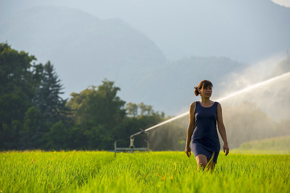 A Woman Walks Through A Lush Green Field With A Sprinkler Spraying Behind Her, Ascona, Ticino, Switzerland
