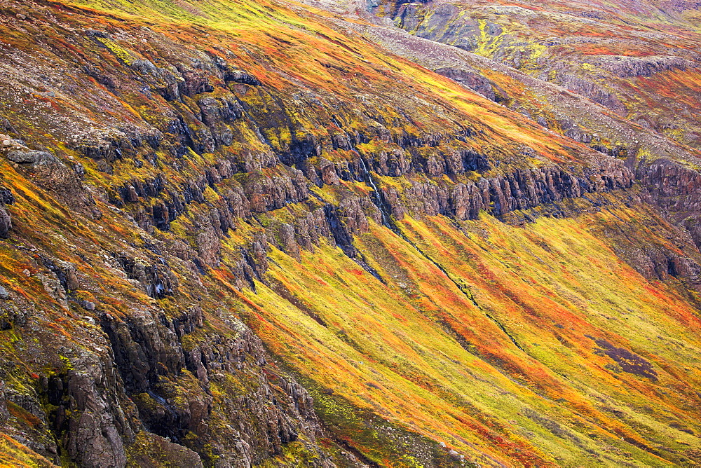 The Steep Sided Cliffs Of Icelands Westfjords Are Very Colourful In Any Season, Iceland - 1116-45432