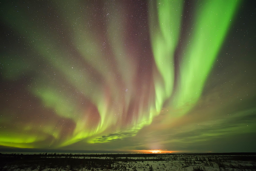 Bands Of Northern Lights In The Dark Manitoba Skies Near Churchill, Manitoba, Canada