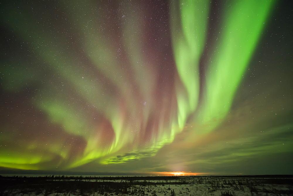 Bands Of Northern Lights In The Dark Manitoba Skies Near Churchill, Manitoba, Canada