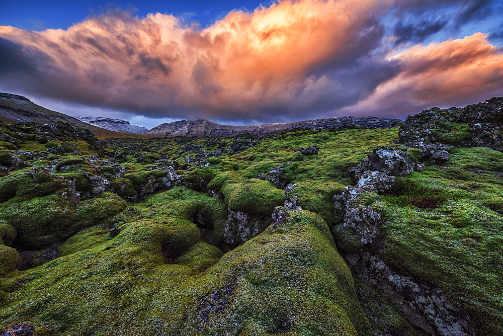 Moss Covered Lava Flow At Sunrise On The Snaefellsness Peninsula, Iceland