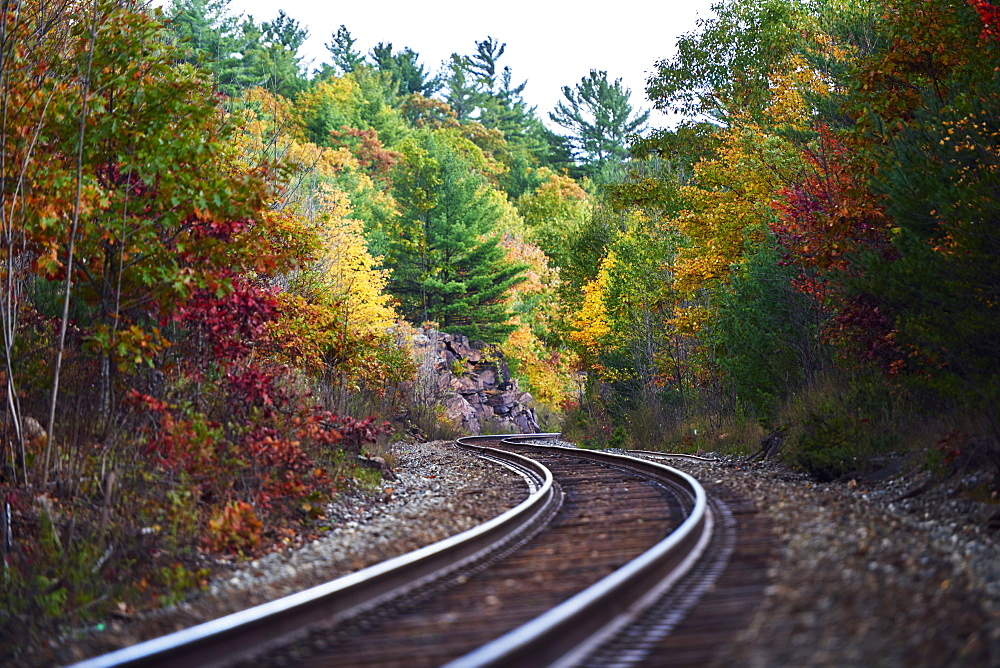 Railroad Tracks Winding Through An Autumn Coloured Forest In Muskoka, Ontario, Canada
