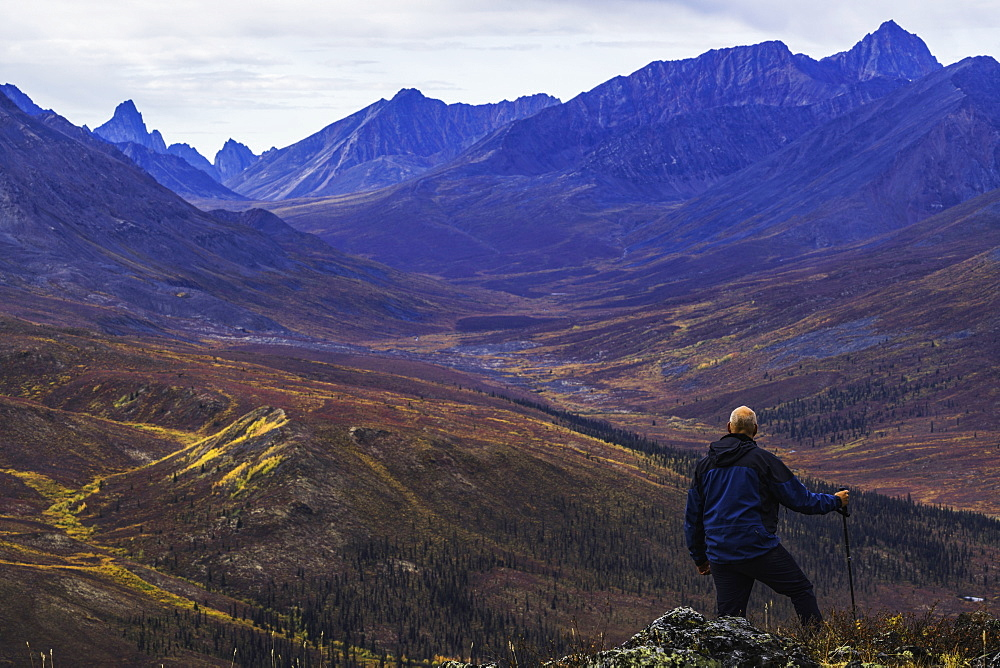 Man Standing On A Mountain Top Overlooking The Klondike Valley In Autumn, Yukon, Canada