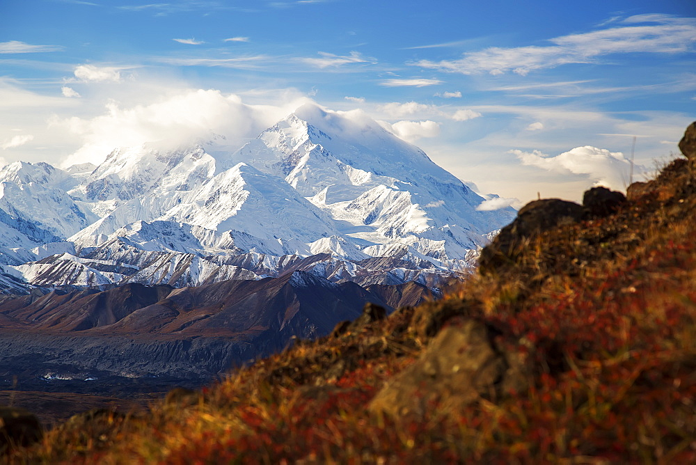 Denali As Seen From Thorofare Ridge Trail, Denali National Park, Alaska, United States Of America