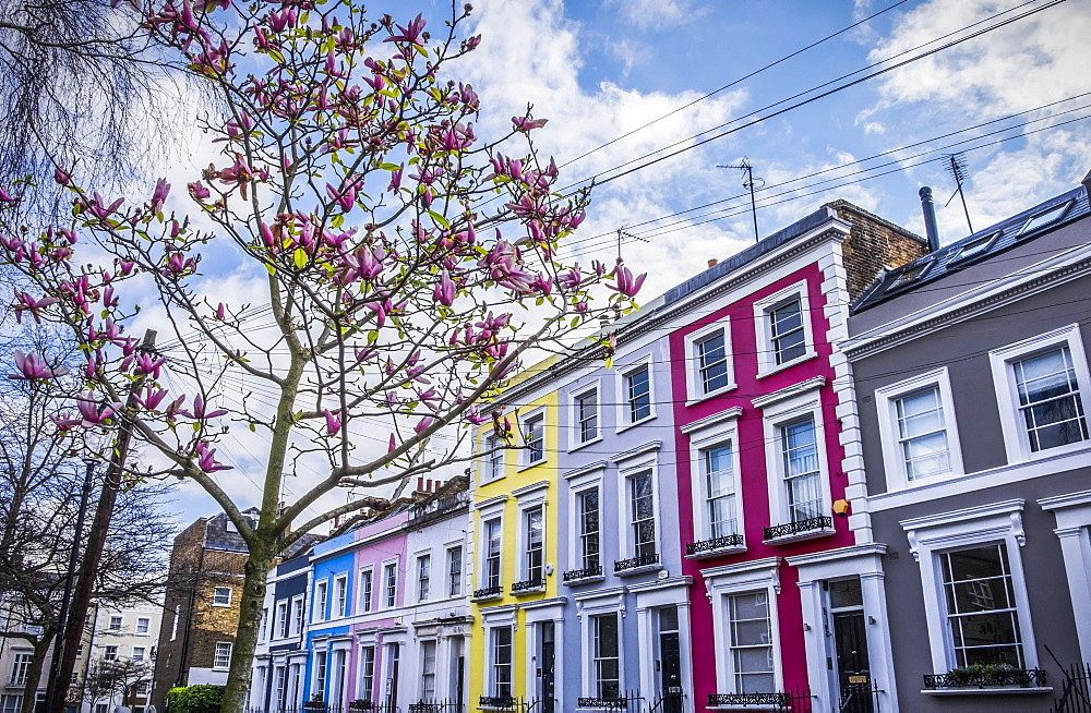 Colourful Row Housing Near Portobello Road, London, England