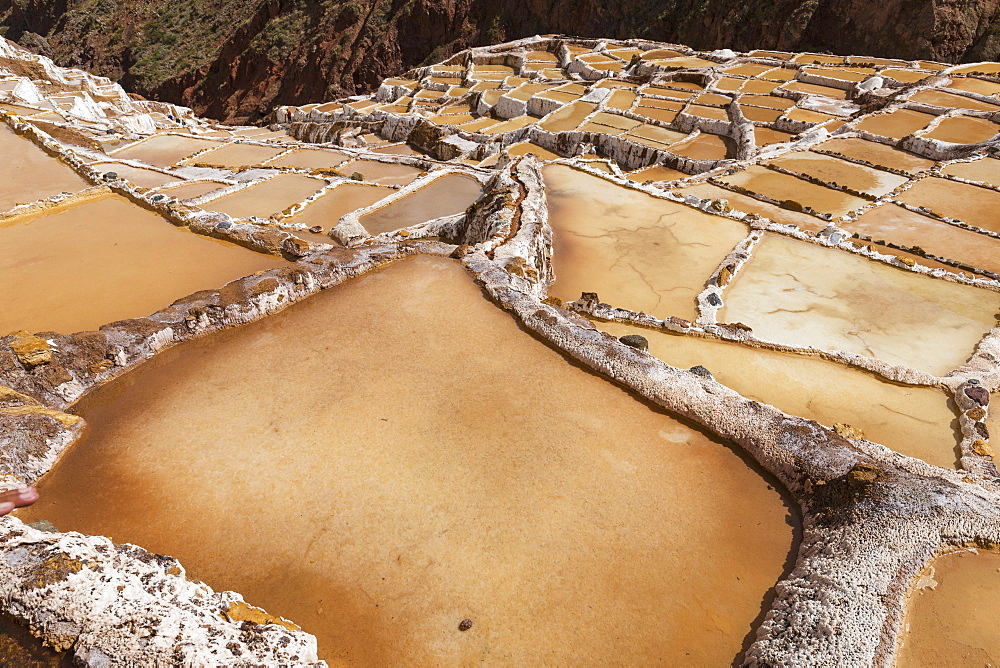Family Owned Salt Ponds In Sacred Valley Near Urubama, Maras, Cusco, Peru