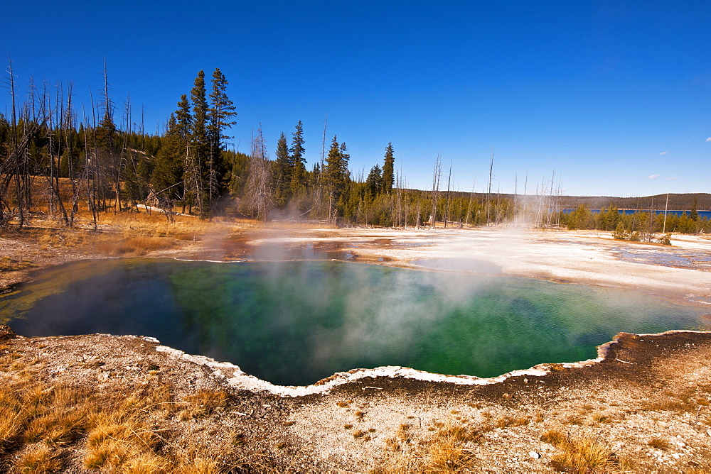Hot Springs In Yellowstone National Park, Wyoming, United States Of America
