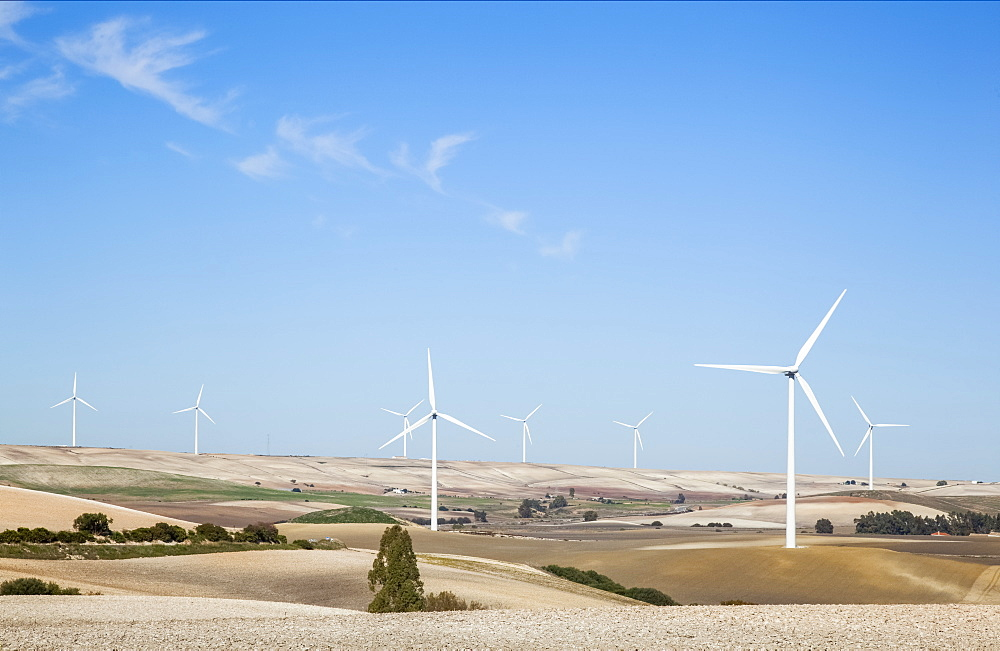 Wind Turbines In Fields With A Blue Sky, Andalusia, Spain