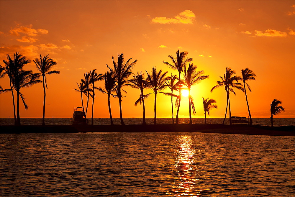 Golden Sunset In An Orange Sky With Silhouetted Palm Trees Along The Coastline, Hawaii, United States Of America
