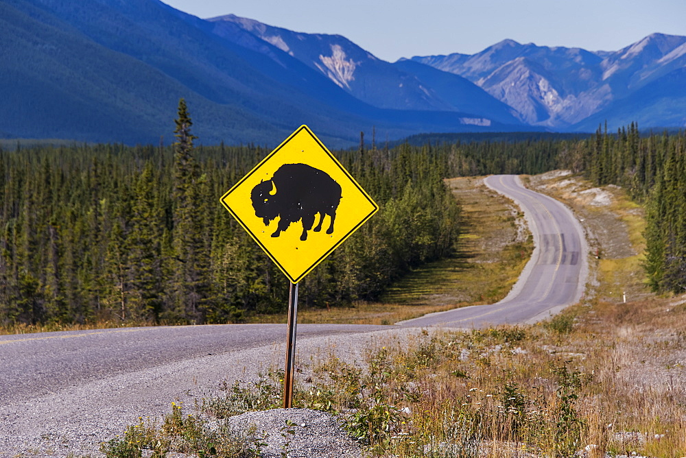 Bison sign posted on the side of the Alaska Highway, British Columbia, Canada