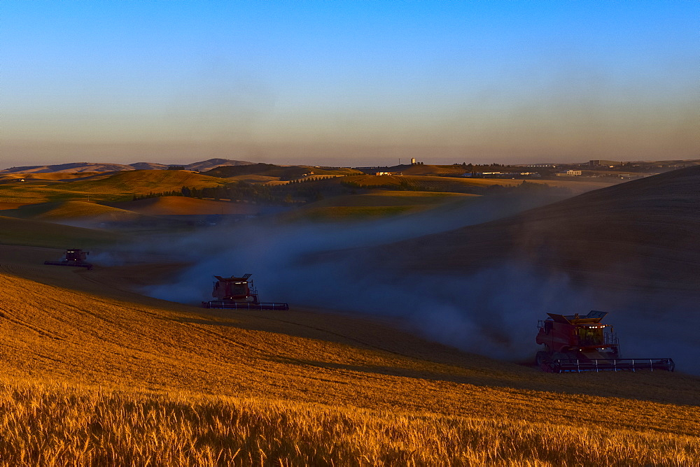 Harvesting Grain In The Palouse Region Of Eastern Washington, Washington, United States Of America