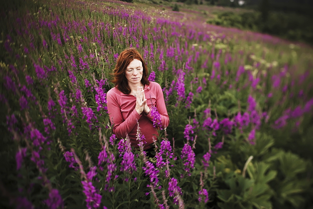 A Woman Doing Yoga In A Meadow With Fireweed (Chamaenerion Angustifolium), Homer, Alaska, United States Of America
