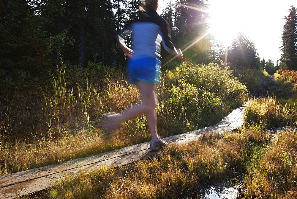 A Young Woman Runs On Wooden Boards Through A Forest, Homer, Alaska, United States Of America