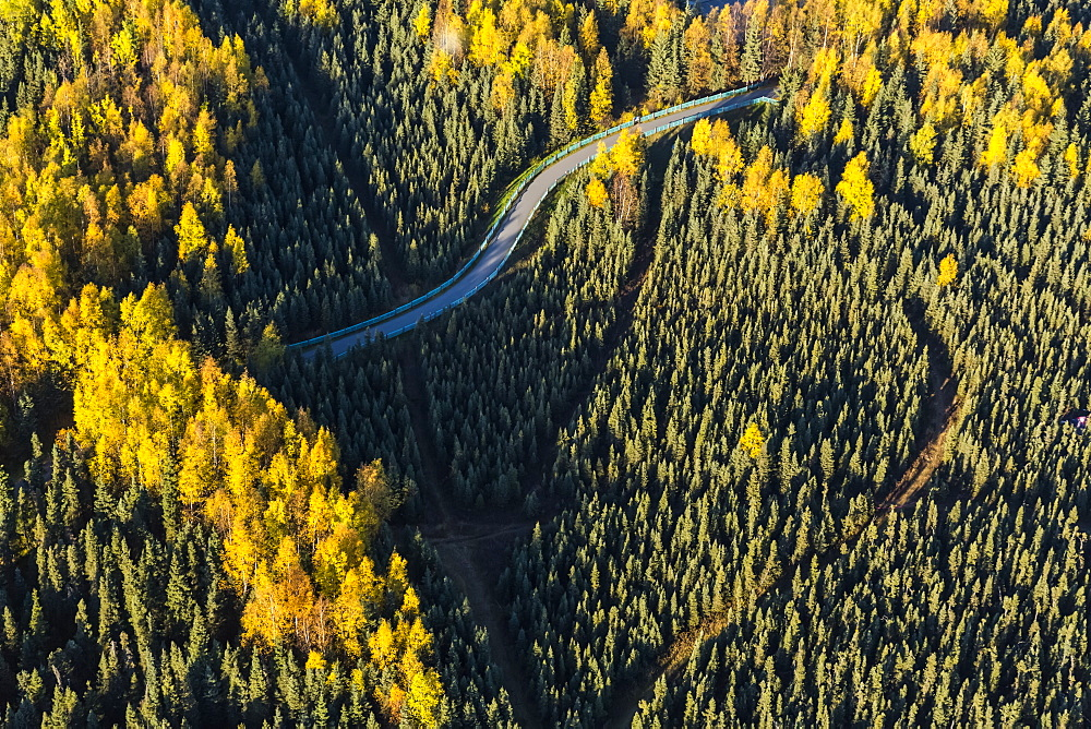 Aerial View Of The Chester Creek Bike Trail Winding Through Spruce And Birch Forests, South-Central Alaska, Anchorage, Alaska, United States Of America