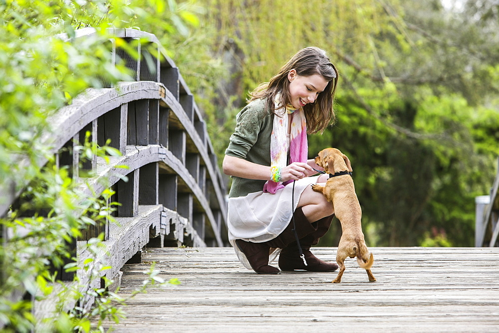 A Young Woman On A Wooden Bridge With Her Small Dog, Washington, United States Of America
