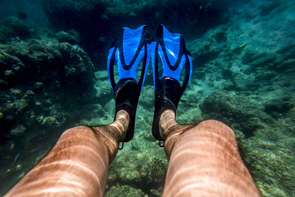 Snorkeling In Benguerra Island, The Second Largest Island In The Bazaruto Archipelago, Mozambique - 1116-47215
