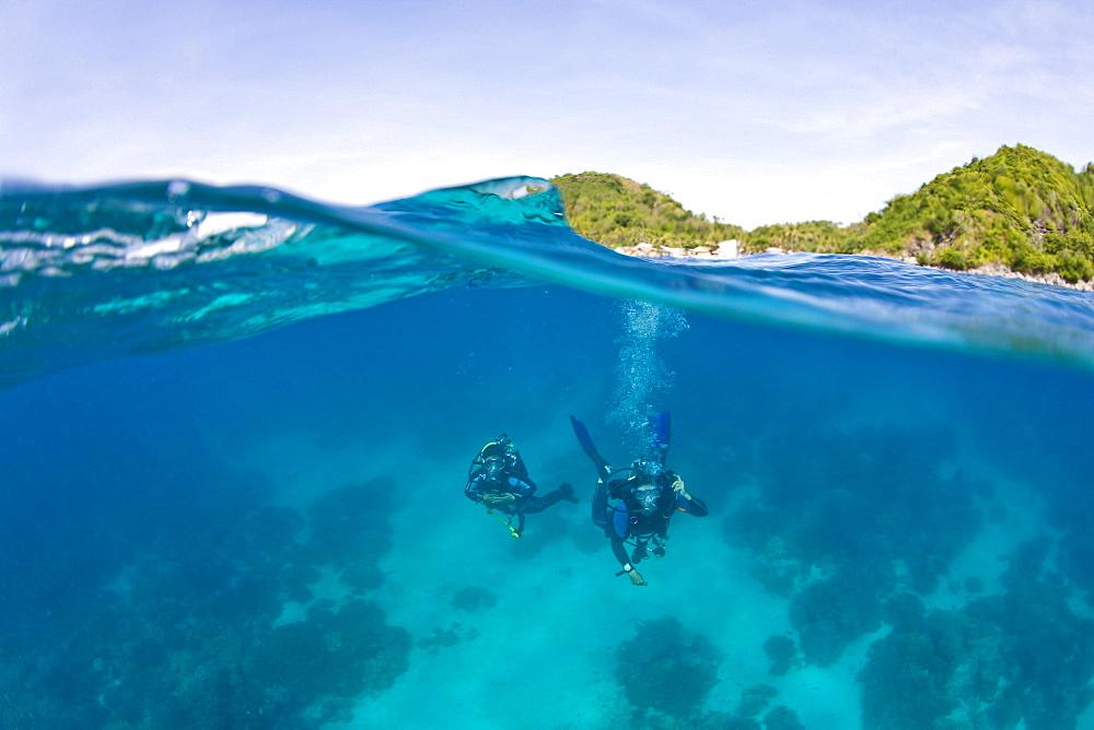 Apo Island Marine Park Negros Oriental Island Philippines Southeast Asia; Scuba Divers
