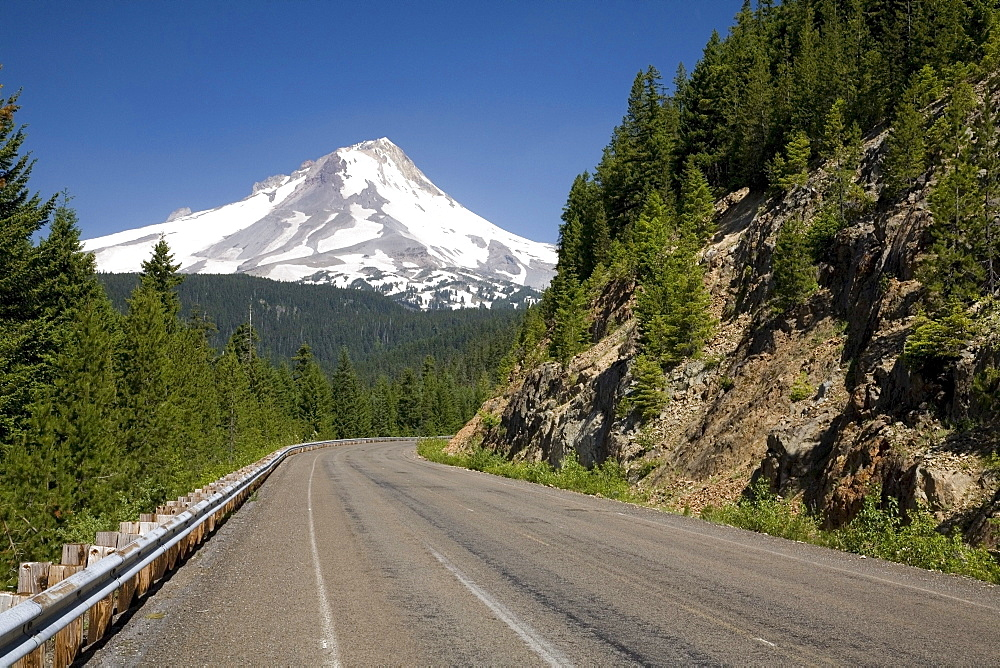 Highway Through Mount Hood National Forest, Oregon, United States Of America