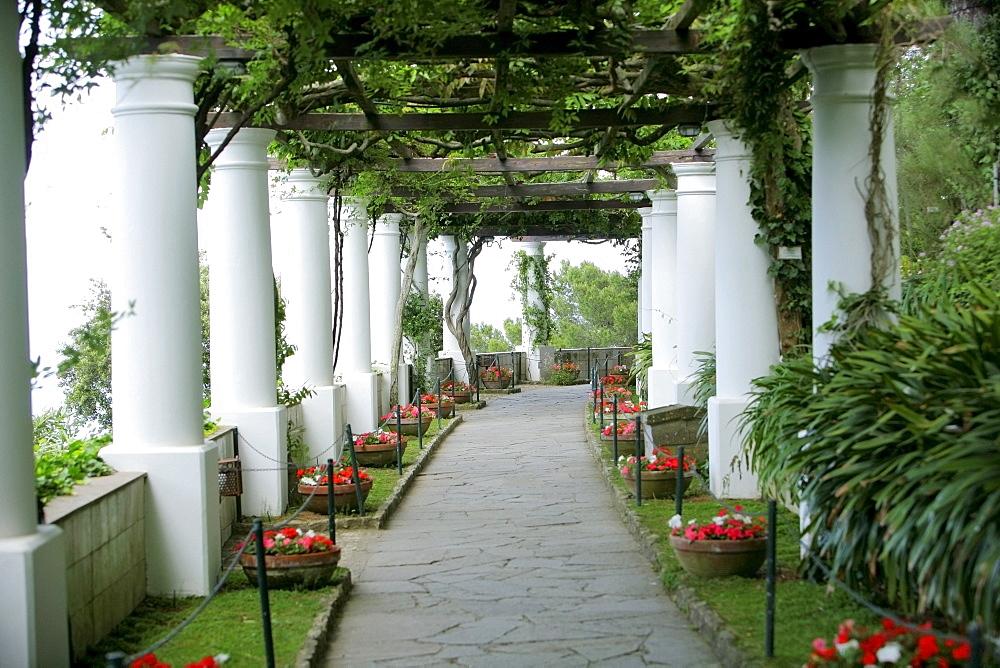 Capri, Italy; White, Ivy-Lined Pillars