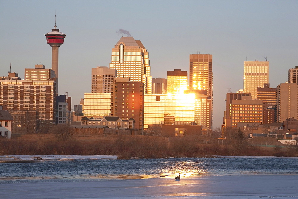 Calgary, Alberta, Canada; Bow River And Buildings Reflecting The Sun