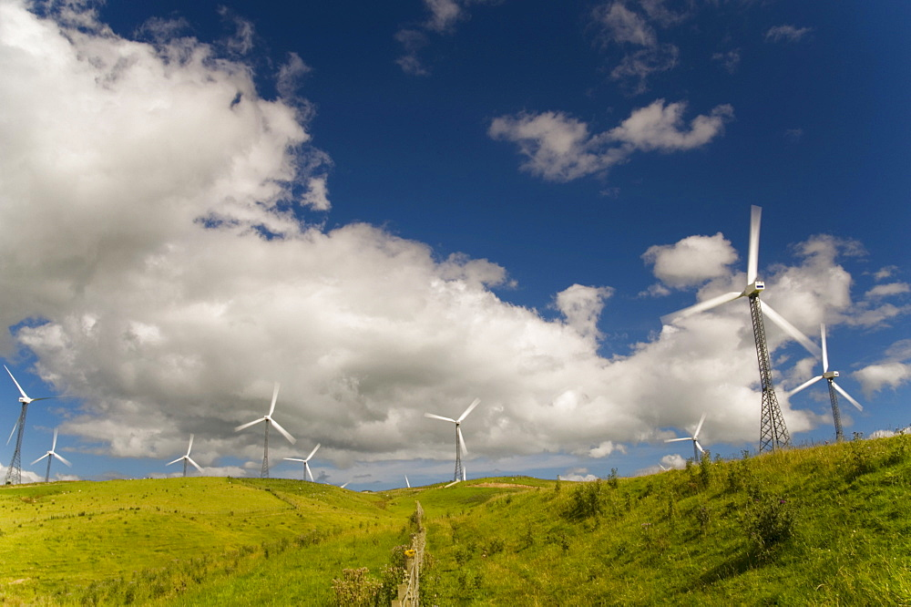 Palmerston North, New Zealand; Wind Turbines In A Field