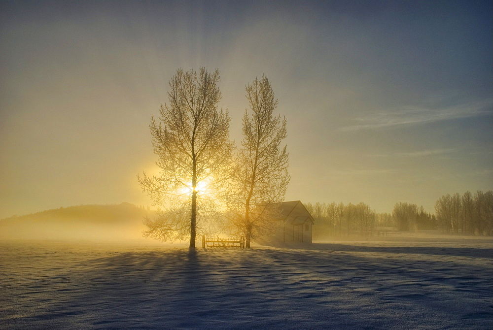 Calgary, Alberta, Canada; A Small Pioneer School In A Misty Winter Sunrise