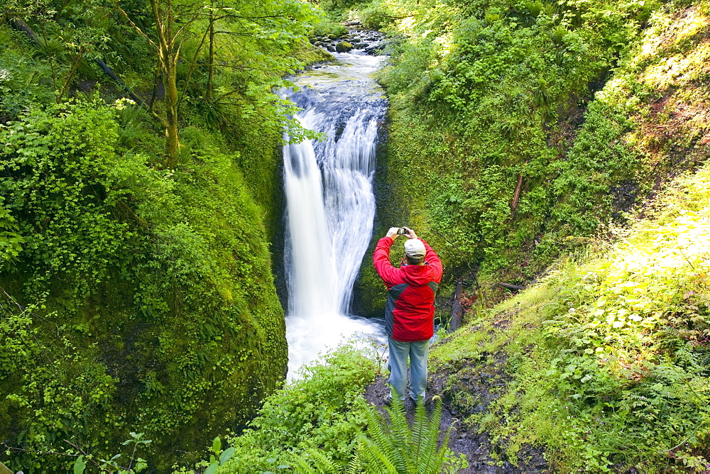 Oregon, United States Of America; A Man Taking A Picture Of Middle Oneonta Falls In Columbia River Gorge National Scenic Area