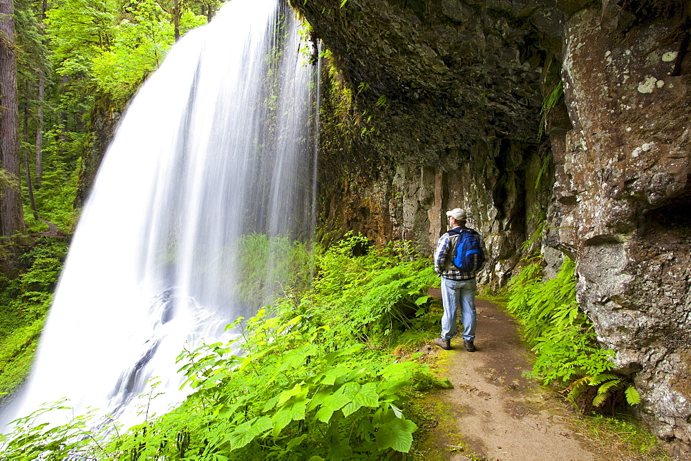 A Hiker At North Middle Falls In Silver Falls State Park; Oregon, USA