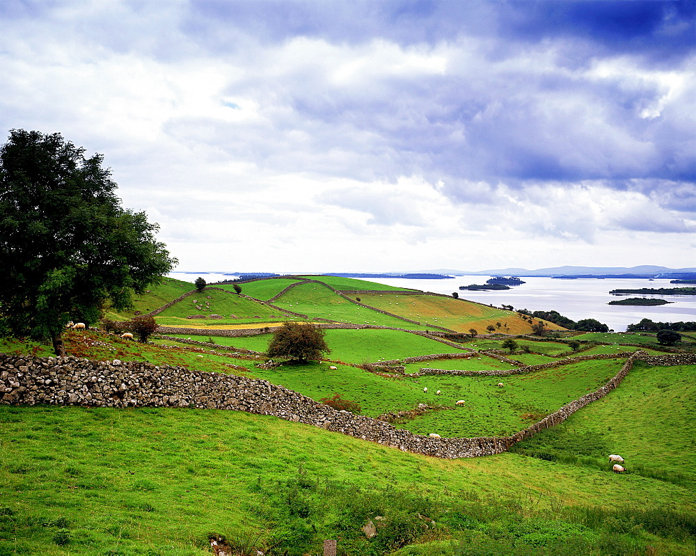 Landscape With Lough Corrib In The Distance, County Galway, Ireland