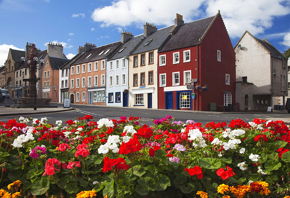 Flowers Along A Street In A Residential Area; Jedburgh, Scottish Borders, Scotland