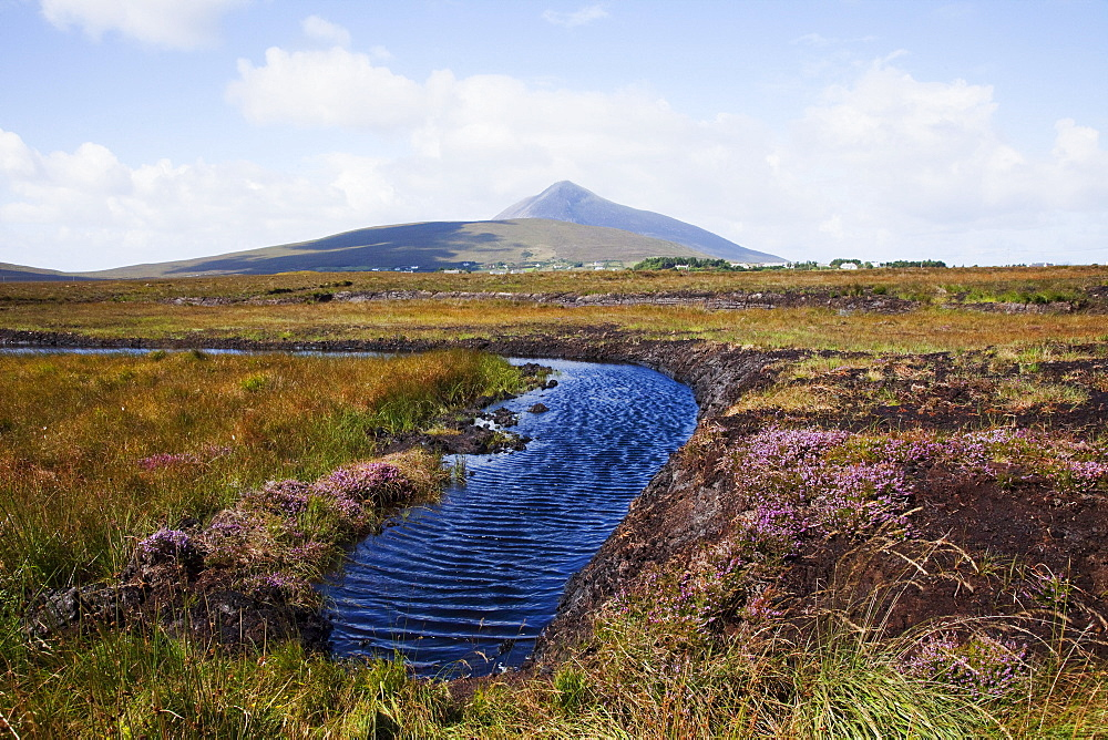 Water Source In Irish Bog; Achill Island, County Mayo, Ireland