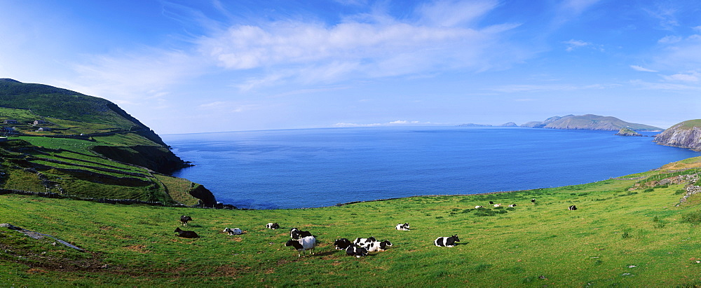 Slea Head, Blasket Islands, Dingle Peninsula, County Kerry, Ireland