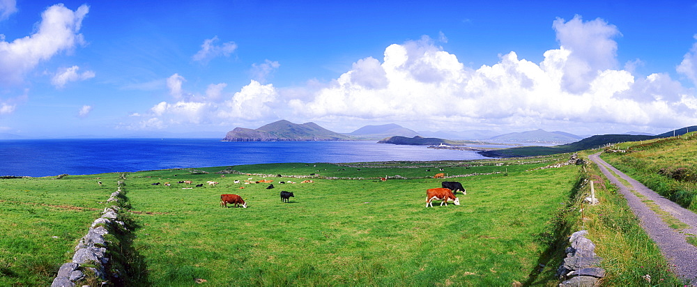 Valentia Island, Ring Of Kerry, County Kerry, Ireland