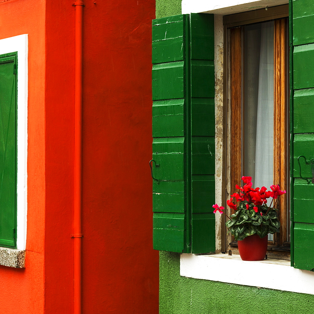 Walls Of A House Painted Red And Green With A Potted Flower On The Windowsill, Venice, Italy