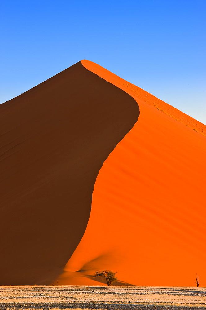Sand Dune, Sossusvlei, Namib Desert, Namibia, Africa