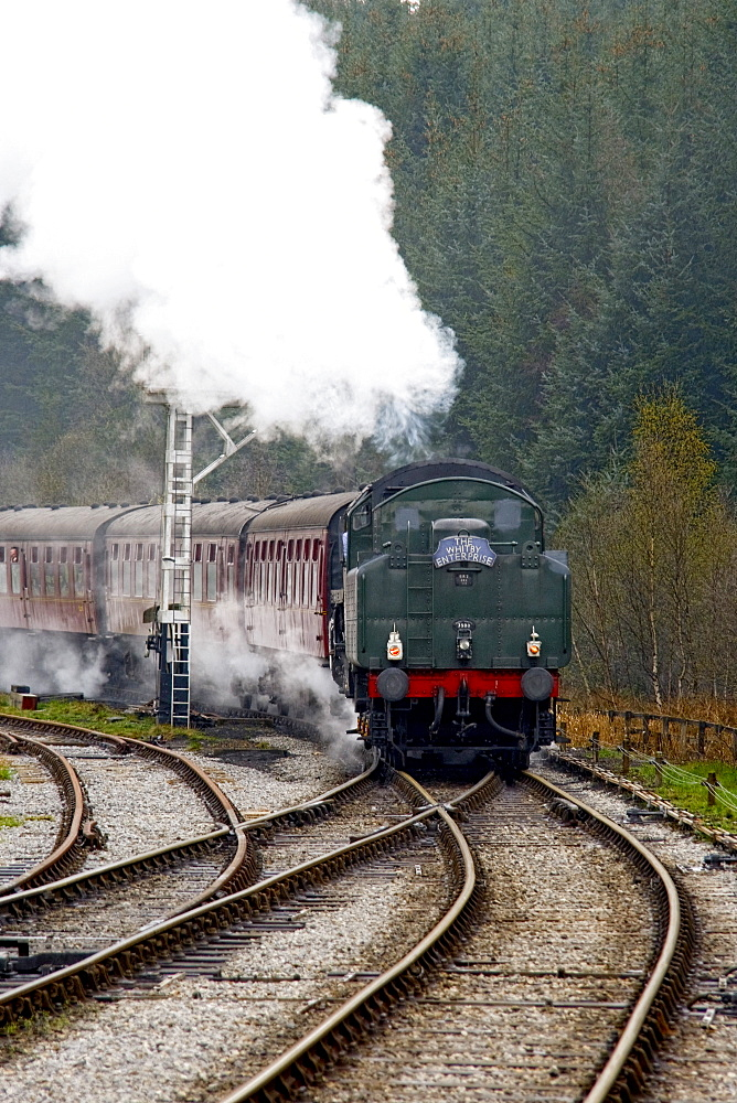 Train On Railroad Tracks, Grosmont, North Yorkshire, England