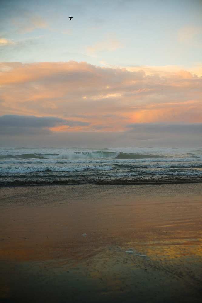 Breaking Waves Crashing Towards The Shore At Sunset, Waihi Beach, New Zealand